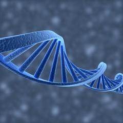 DNA Helix 01