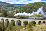 steam train on viaduct Novina, Krystofovo Valley, Czech Republic