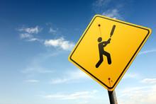 Cricket zone ahead. Yellow traffic sign.
