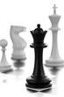 Black queen and white chessmen