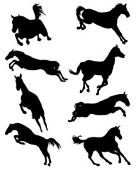 Black silhouettes of horses in jump, vector