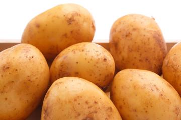 馬鈴薯の収穫