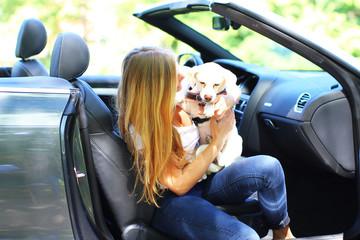 junges Mädchen mit Hund im Auto