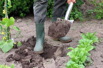 Gärtner mit Gummistiefeln gräbt Loch in Garten
