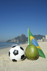 Brazil Flag Football Coconut Rio Beach
