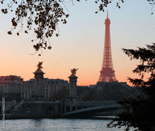 View on Eiffel Tower in the evening, Paris, France © denys_kuvaiev