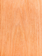 Texture of walnut, wood veneer, natural rural tree background