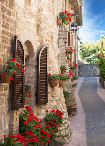 Vicolo con fiori - 66065276