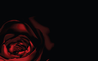 Red Rose background, vector