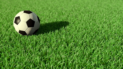Soccer ball rolling on the grass