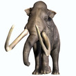 ������, ������: Columbian Mammoth Front Profile