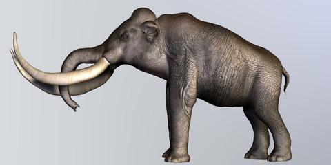 Columbian Mammoth Side Profile