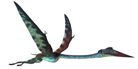 Quetzalcoatlus Profile