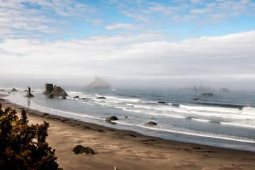 Summer Morning on an Oregon Beach