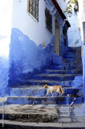 Chefchaouen, Morocco - 66078474