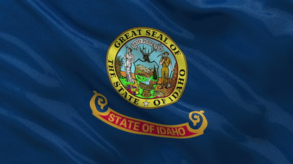 US state flag of Idaho waving in the wind - loop