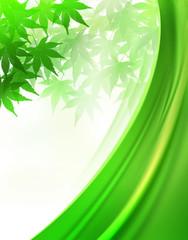 新緑とカーテン