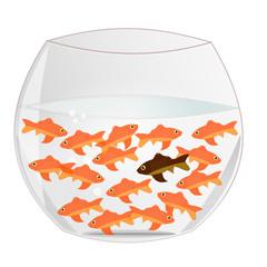 Le poisson différent
