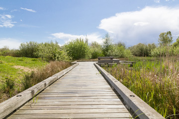 lake path.