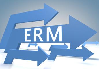 Enterprise Risk Resource Managament