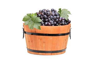 Studio shot of grapes in a wooden barrel