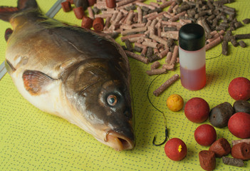 mirror carp, bait and fishing tips on a folding table