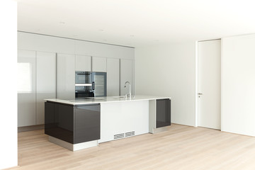 beautiful empty apartment, modern kitchen