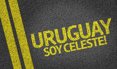 Uruguay Soy Celeste! (in spanish)