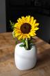 Sonnenblume in der Vase