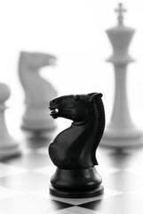 Chess: black knight