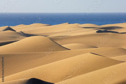 Deurstickers Zandwoestijn Dunes of Maspalomas & Océan