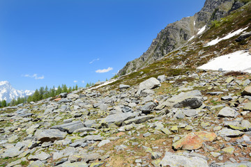 Pietraia in alta montagna