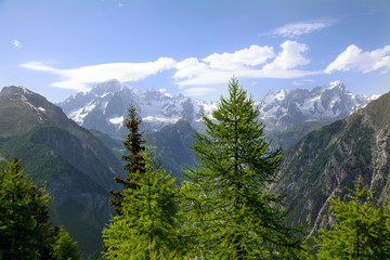 Il Monte Bianco dal Colle San Carlo - Valle d'Aosta