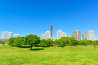 Landscape grass prospects the MM21 buildings of landmark