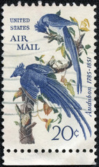 stamp shows Columbia Jays, John James Audubon