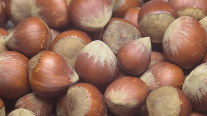 A pile of shelled hazelnuts rotating smoothly