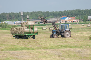 Mechanized harvesting of grass on the flood-plain meadow