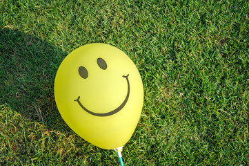 Yellow smiley balloon is on the green grass, free space for text