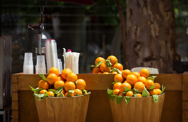 outdoor market with orange