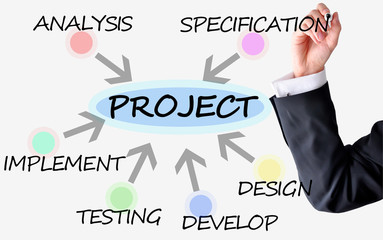 Project management versus software implementation with businessm