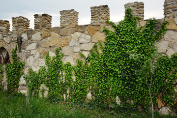 fence of a large brick towers and green ivy grows