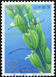 stamp printed by Japan shows Plant
