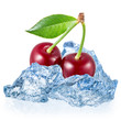 Cherry with ice isolated on white background