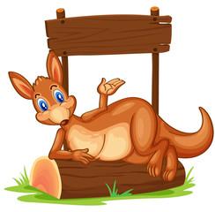 A kangaroo under the empty wooden signboard