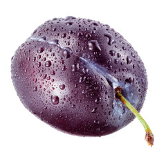 Plum with drops on a white background.