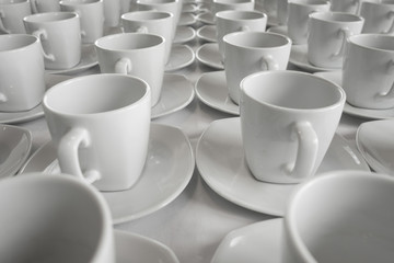 Row of cup for Business Seminar
