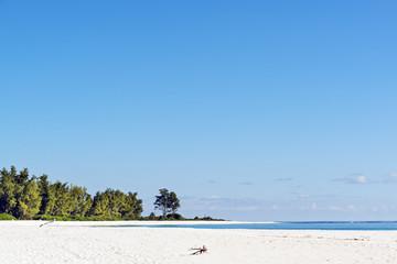 white-sand tropical beach