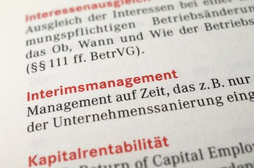 Interimsmanagement, interim-management