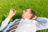 businessman lying on the grass and sniffs dandelion poster
