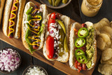 Fototapety Gourmet Grilled All Beef Hots Dogs